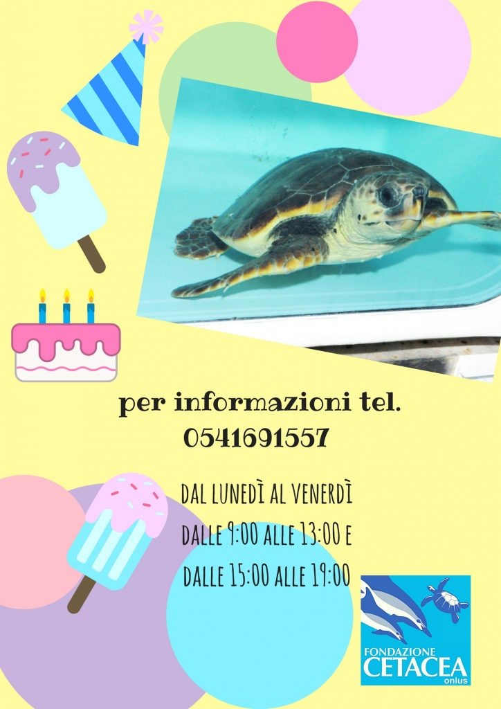 pleanno in Fondazione Cetacea – Fondazione Cetacea